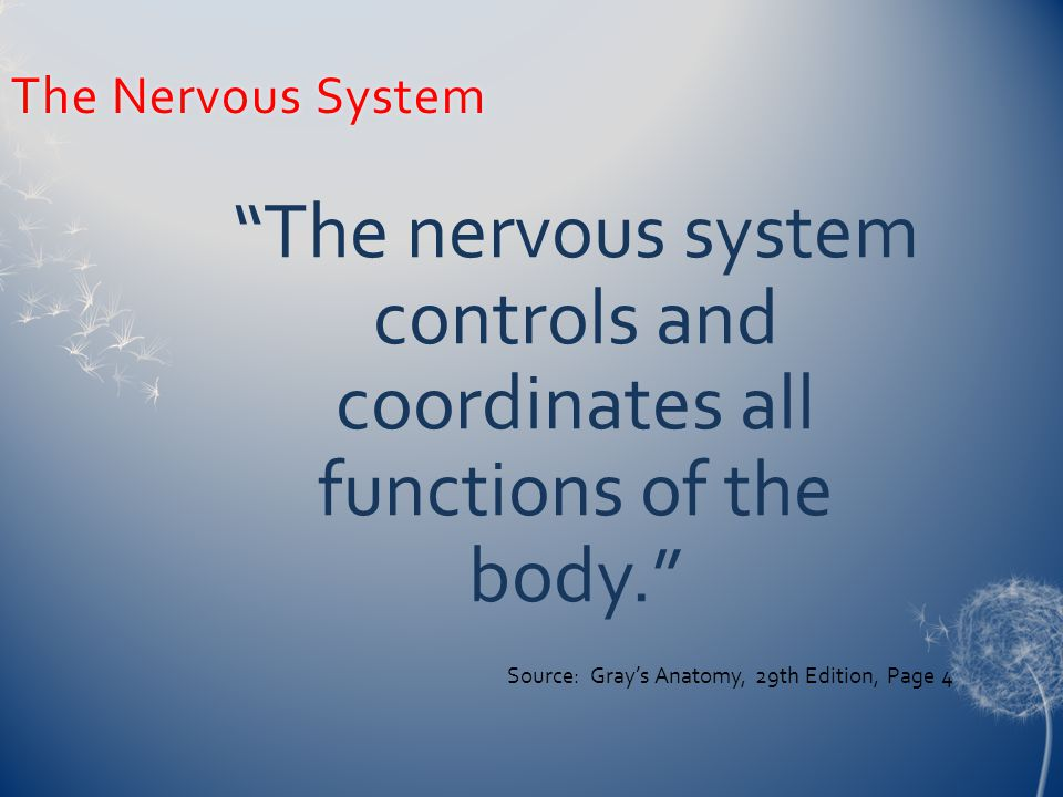 The Nervous SystemThe Nervous System The nervous system controls and coordinates all functions of the body. Source: Gray's Anatomy, 29th Edition, Page 4