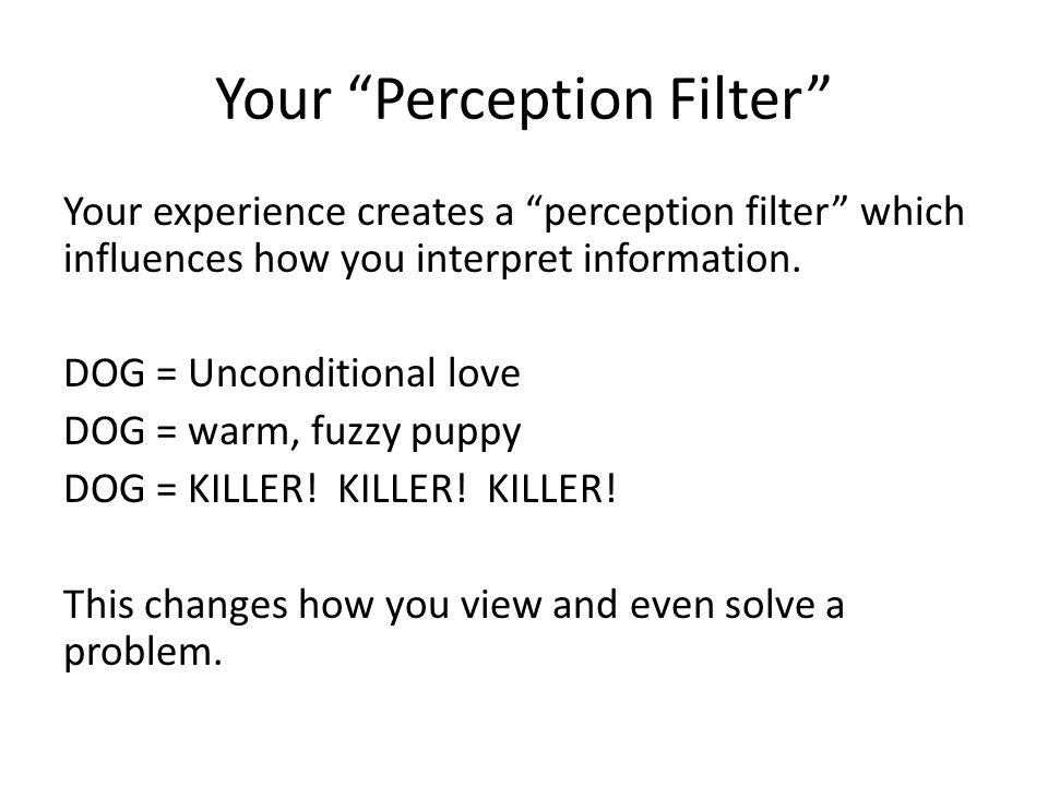 Your Perception Filter Your experience creates a perception filter which influences how you interpret information.