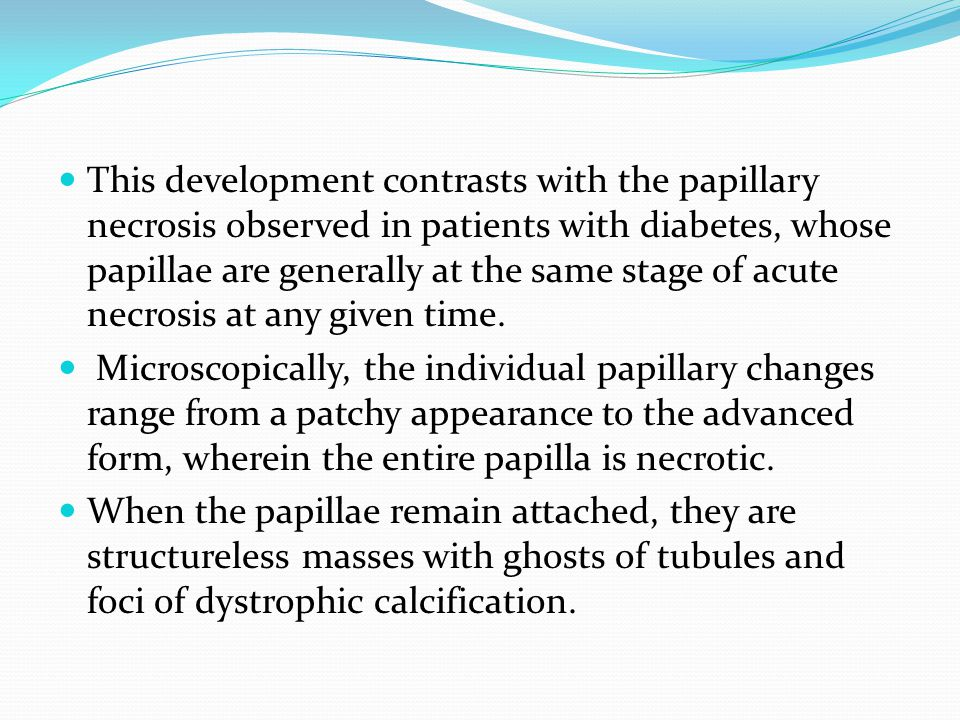 This development contrasts with the papillary necrosis observed in patients with diabetes, whose papillae are generally at the same stage of acute necrosis at any given time.