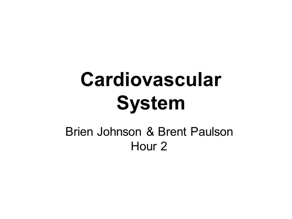 Cardiovascular System Brien Johnson & Brent Paulson Hour 2