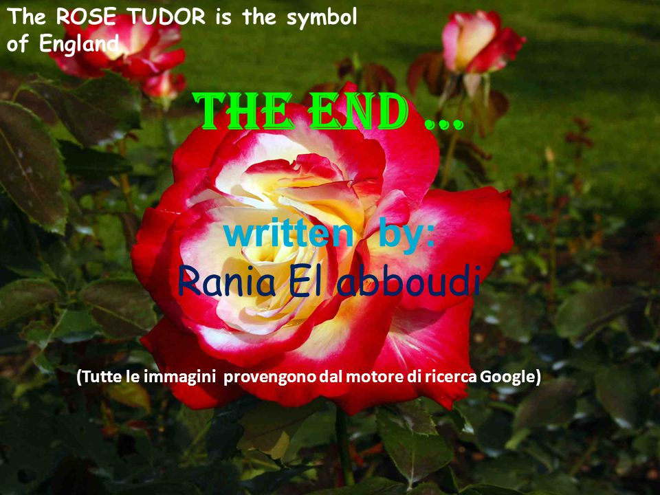 THE END … written by: Rania El abboudi (Tutte le immagini provengono dal motore di ricerca Google) The ROSE TUDOR is the symbol of England
