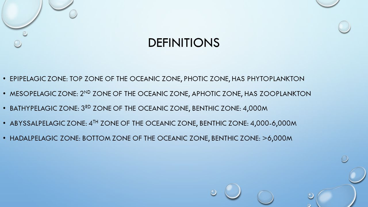 DEFINITIONS EPIPELAGIC ZONE: TOP ZONE OF THE OCEANIC ZONE, PHOTIC ZONE, HAS PHYTOPLANKTON MESOPELAGIC ZONE: 2 ND ZONE OF THE OCEANIC ZONE, APHOTIC ZONE, HAS ZOOPLANKTON BATHYPELAGIC ZONE: 3 RD ZONE OF THE OCEANIC ZONE, BENTHIC ZONE: 4,000M ABYSSALPELAGIC ZONE: 4 TH ZONE OF THE OCEANIC ZONE, BENTHIC ZONE: 4,000-6,000M HADALPELAGIC ZONE: BOTTOM ZONE OF THE OCEANIC ZONE, BENTHIC ZONE: >6,000M