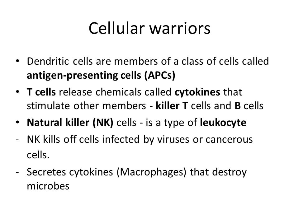 Cellular warriors Dendritic cells are members of a class of cells called antigen-presenting cells (APCs) T cells release chemicals called cytokines th