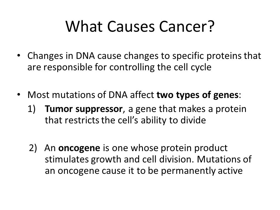 What Causes Cancer? Changes in DNA cause changes to specific proteins that are responsible for controlling the cell cycle Most mutations of DNA affect