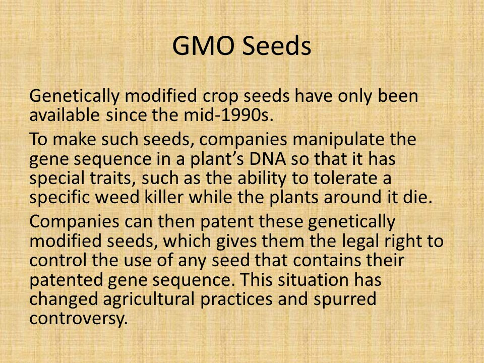 GMO Seeds Genetically modified crop seeds have only been available since the mid-1990s.