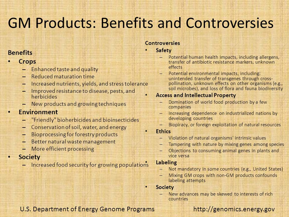 GM Products: Benefits and Controversies Benefits Crops – Enhanced taste and quality – Reduced maturation time – Increased nutrients, yields, and stress tolerance – Improved resistance to disease, pests, and herbicides – New products and growing techniques Environment – Friendly bioherbicides and bioinsecticides – Conservation of soil, water, and energy – Bioprocessing for forestry products – Better natural waste management – More efficient processing Society – Increased food security for growing populations Controversies Safety – Potential human health impacts, including allergens, transfer of antibiotic resistance markers, unknown effects – Potential environmental impacts, including: unintended transfer of transgenes through cross- pollination, unknown effects on other organisms (e.g., soil microbes), and loss of flora and fauna biodiversity Access and Intellectual Property – Domination of world food production by a few companies – Increasing dependence on industrialized nations by developing countries – Biopiracy, or foreign exploitation of natural resources Ethics – Violation of natural organisms intrinsic values – Tampering with nature by mixing genes among species – Objections to consuming animal genes in plants and vice versa Labeling – Not mandatory in some countries (e.g., United States) – Mixing GM crops with non-GM products confounds labeling attempts Society – New advances may be skewed to interests of rich countries U.S.