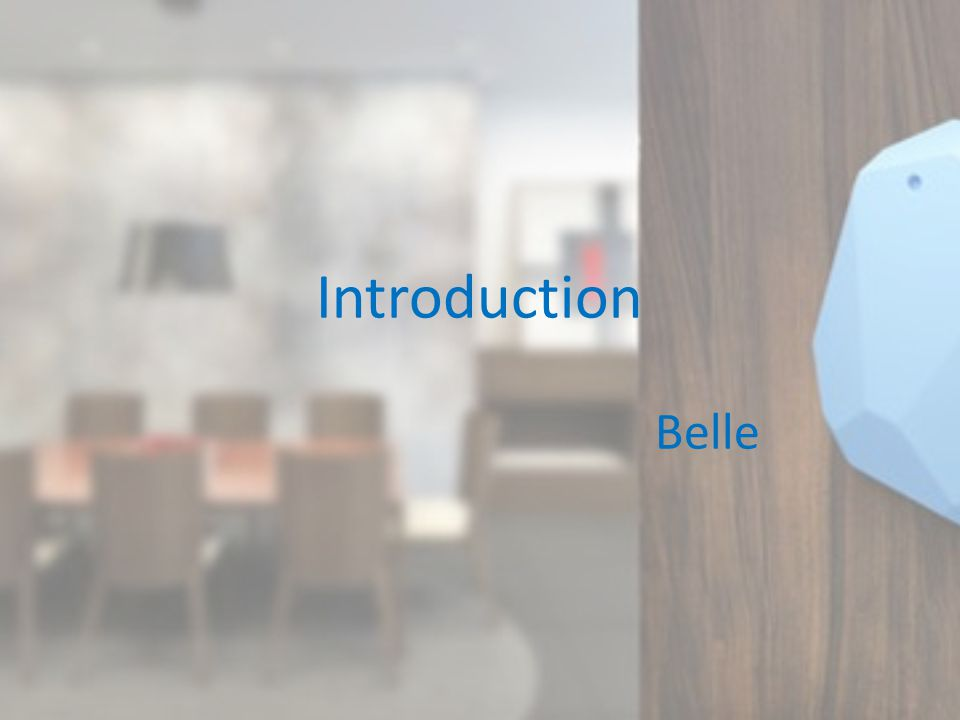 Introduction Belle