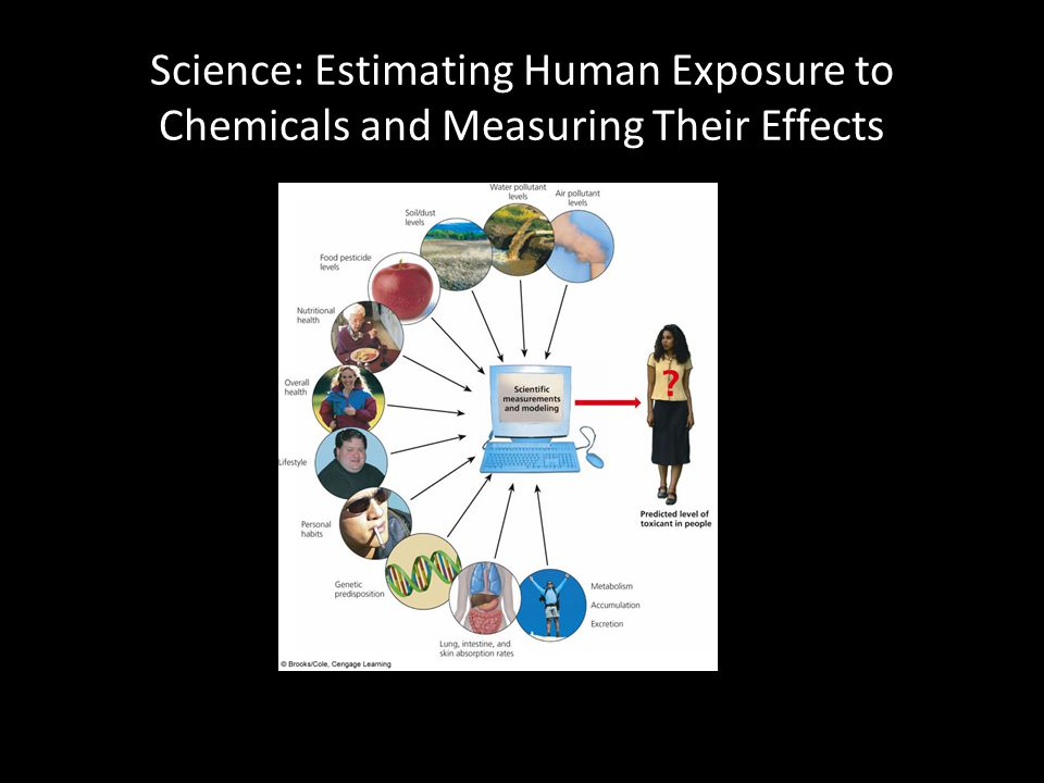 Science: Estimating Human Exposure to Chemicals and Measuring Their Effects