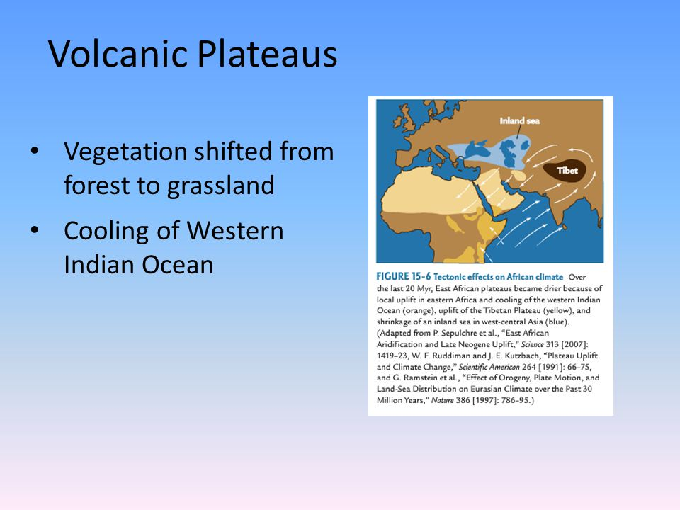Volcanic Plateaus Vegetation shifted from forest to grassland Cooling of Western Indian Ocean
