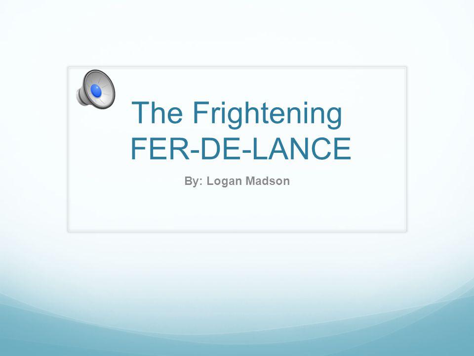 The Frightening FER-DE-LANCE By: Logan Madson