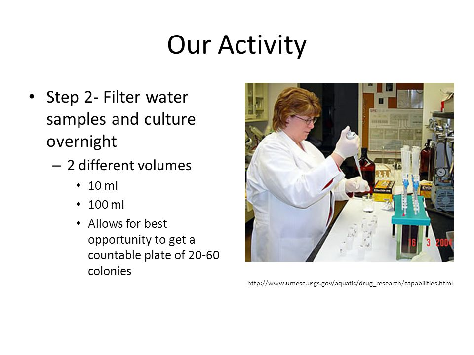 Our Activity Step 2- Filter water samples and culture overnight – 2 different volumes 10 ml 100 ml Allows for best opportunity to get a countable plate of 20-60 colonies http://www.umesc.usgs.gov/aquatic/drug_research/capabilities.html