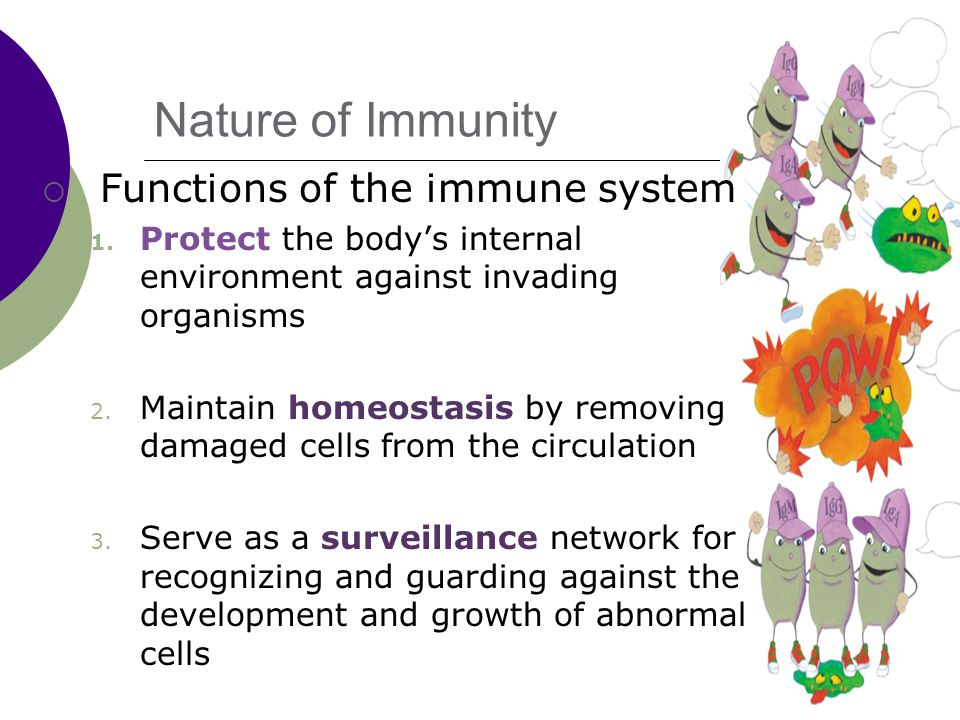 Nature of Immunity  Functions of the immune system 1.