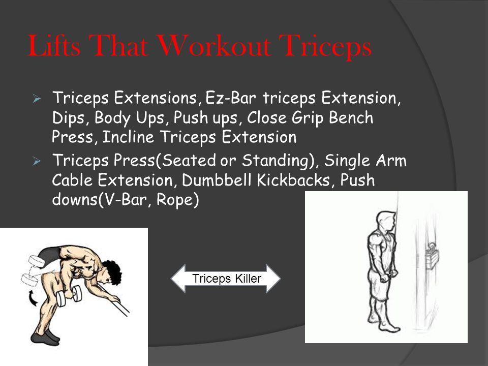Lifts That Workout Biceps  Incline Hammer Curls, Concentrated Curls, Hammer Curls, Bicep Curls, T- Curls, Spider Curl, EZ-Bar Curl, Preacher Curl Seated Hammer Curls Preacher Curl