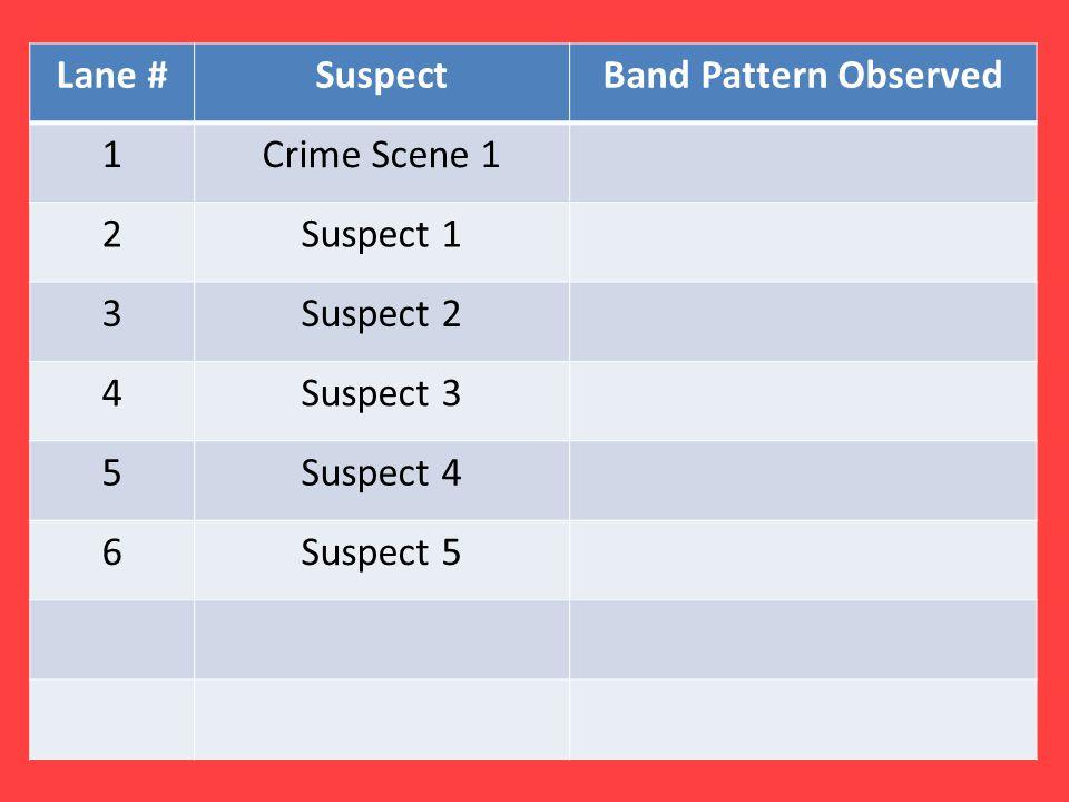 Lane #SuspectBand Pattern Observed 1Crime Scene 1 2Suspect 1 3Suspect 2 4Suspect 3 5Suspect 4 6Suspect 5