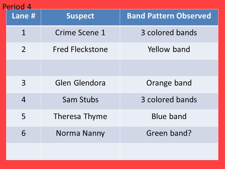 Lane #SuspectBand Pattern Observed 1Crime Scene 13 colored bands 2Fred FleckstoneYellow band 3Glen GlendoraOrange band 4Sam Stubs3 colored bands 5Theresa ThymeBlue band 6Norma NannyGreen band.
