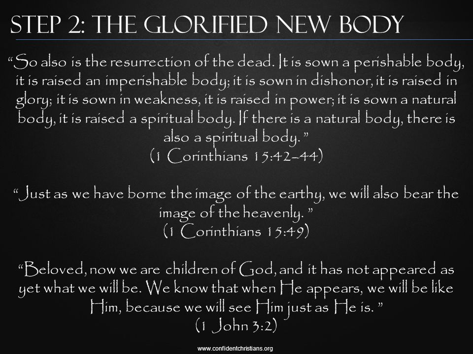 www.confidentchristians.org Step 2: The Glorified New Body So also is the resurrection of the dead.