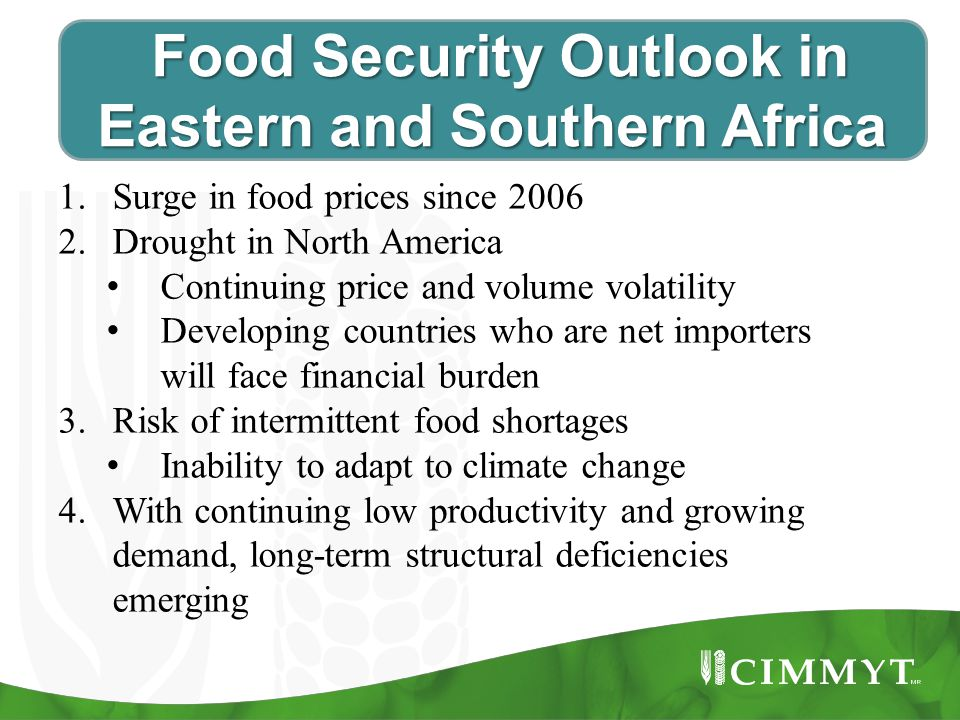 Food Security Outlook in Eastern and Southern Africa Food Security Outlook in Eastern and Southern Africa 1.Surge in food prices since 2006 2.Drought in North America Continuing price and volume volatility Developing countries who are net importers will face financial burden 3.Risk of intermittent food shortages Inability to adapt to climate change 4.With continuing low productivity and growing demand, long-term structural deficiencies emerging