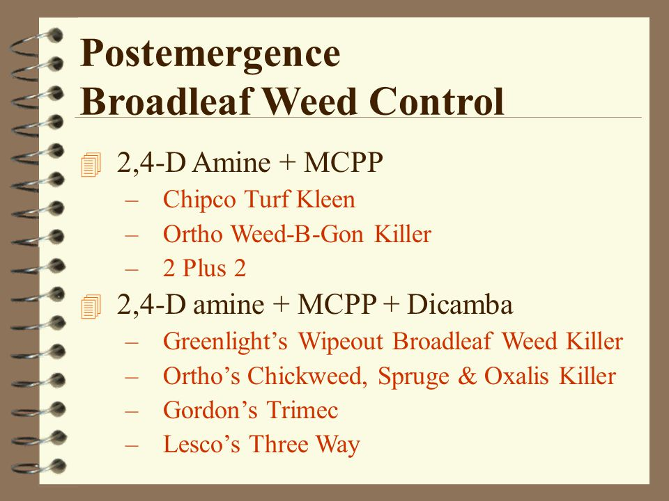 Postemergence Broadleaf Weed Control 4 2,4-D Amine + MCPP –Chipco Turf Kleen –Ortho Weed-B-Gon Killer –2 Plus 2 4 2,4-D amine + MCPP + Dicamba –Greenlight's Wipeout Broadleaf Weed Killer –Ortho's Chickweed, Spruge & Oxalis Killer –Gordon's Trimec –Lesco's Three Way
