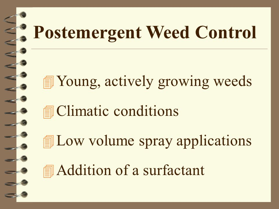 Postemergent Weed Control 4 Young, actively growing weeds 4 Climatic conditions 4 Low volume spray applications 4 Addition of a surfactant