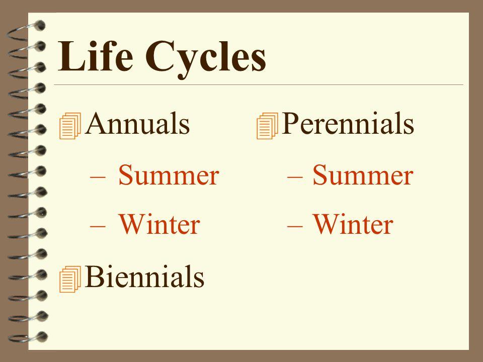 Life Cycles 4 Annuals –Summer –Winter 4 Biennials 4 Perennials –Summer –Winter