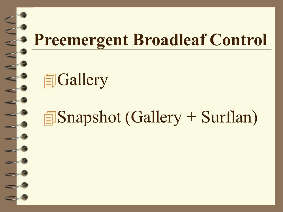 Preemergent Broadleaf Control 4 Gallery 4 Snapshot (Gallery + Surflan)