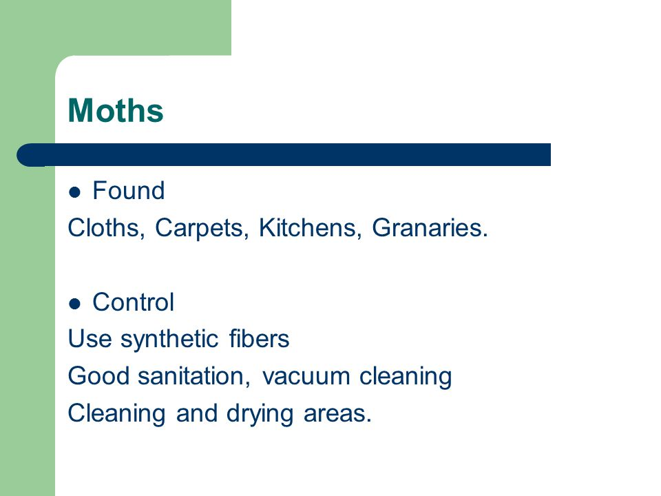 Moths Found Cloths, Carpets, Kitchens, Granaries. Control Use synthetic fibers Good sanitation, vacuum cleaning Cleaning and drying areas.
