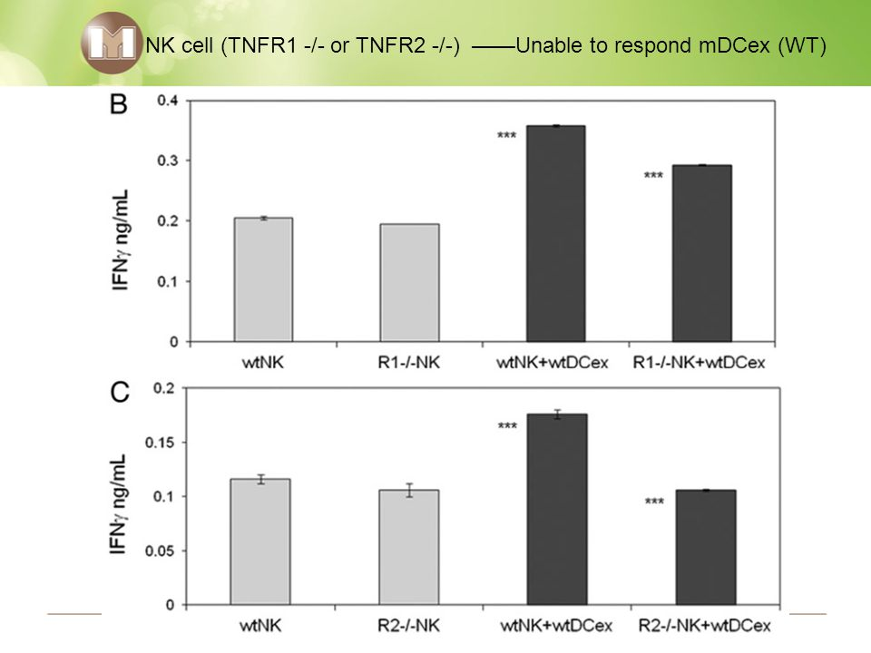 NK cell (TNFR1 -/- or TNFR2 -/-) ——Unable to respond mDCex (WT)