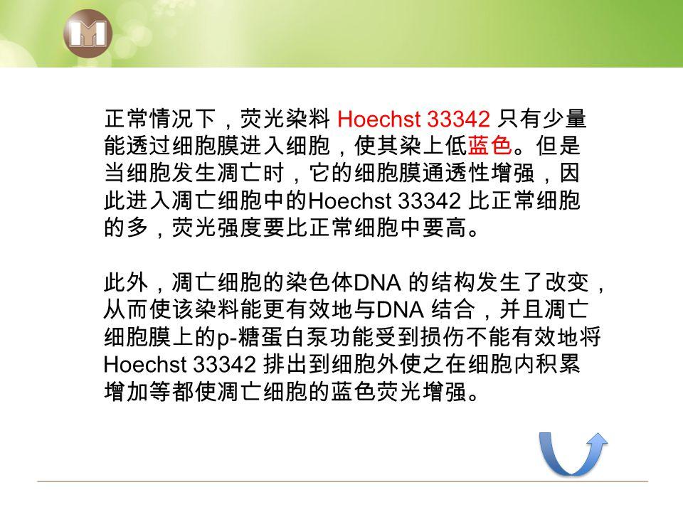 正常情况下,荧光染料 Hoechst 33342 只有少量 能透过细胞膜进入细胞,使其染上低蓝色。但是 当细胞发生凋亡时,它的细胞膜通透性增强,因 此进入凋亡细胞中的 Hoechst 33342 比正常细胞 的多,荧光强度要比正常细胞中要高。 此外,凋亡细胞的染色体 DNA 的结构发生了改变, 从而