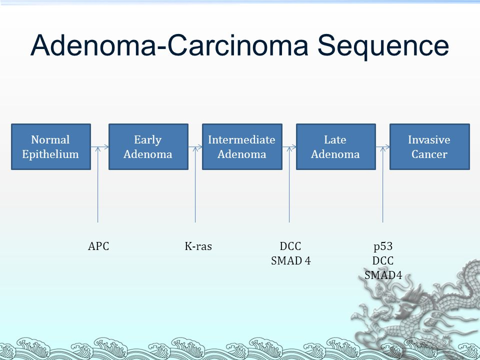 Adenoma-Carcinoma Sequence 21 Normal Epithelium Early Adenoma Intermediate Adenoma Late Adenoma Invasive Cancer APCK-rasDCC SMAD 4 p53 DCC SMAD4