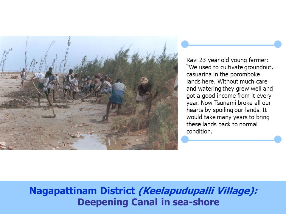 Nagapattinam District (Keelapudupalli Village): Deepening Canal in sea-shore Ravi 23 year old young farmer: We used to cultivate groundnut, casuarina in the poromboke lands here.