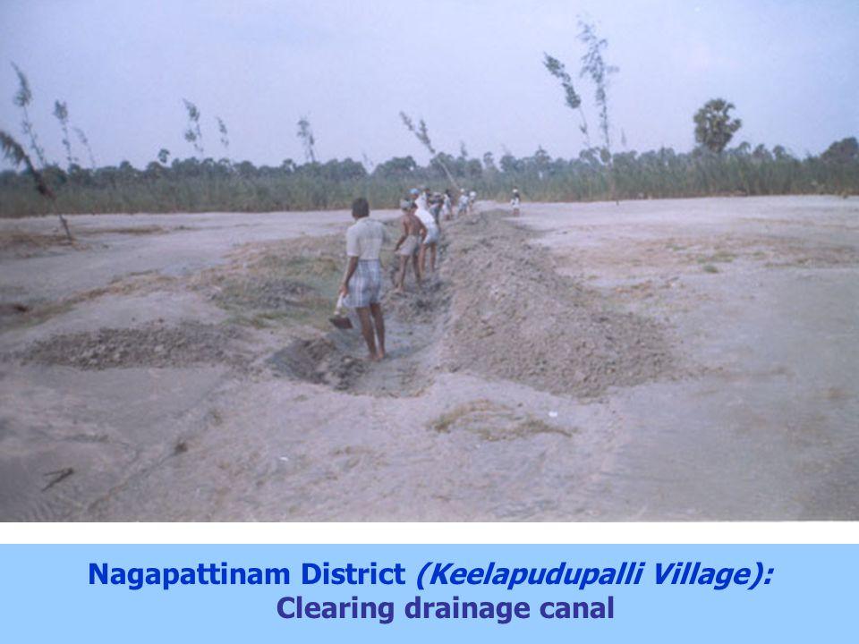 Nagapattinam District (Keelapudupalli Village): Clearing drainage canal
