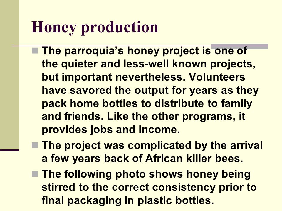 Honey production The parroquia's honey project is one of the quieter and less-well known projects, but important nevertheless.