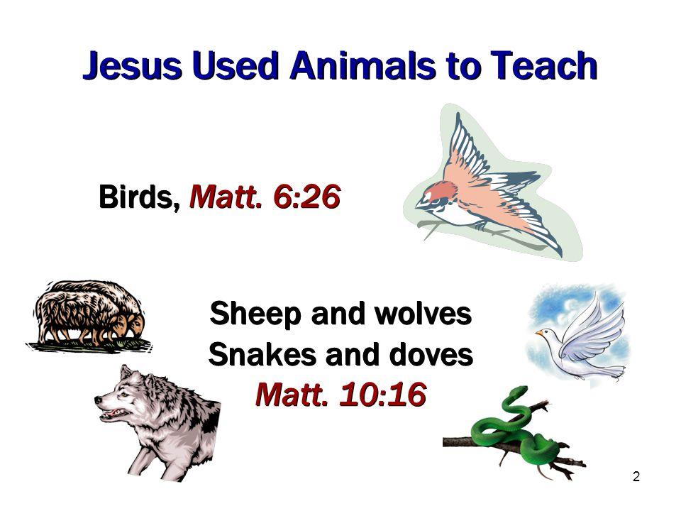 2 Sheep and wolves Snakes and doves Matt. 10:16 Sheep and wolves Snakes and doves Matt. 10:16 Jesus Used Animals to Teach Birds, Matt. 6:26