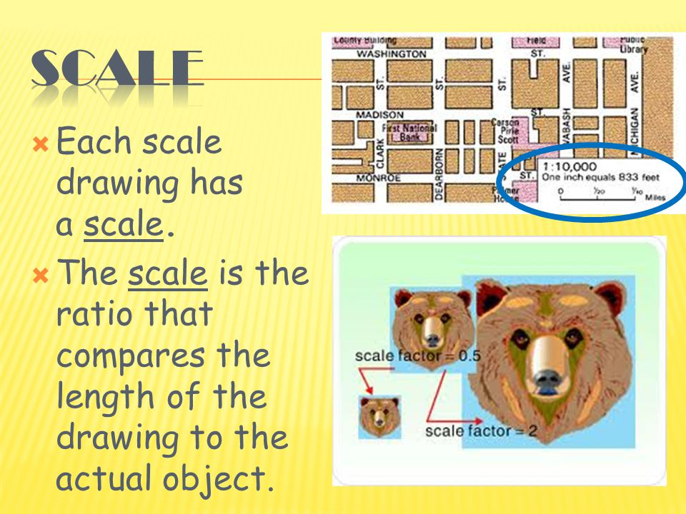  Each scale drawing has a scale.