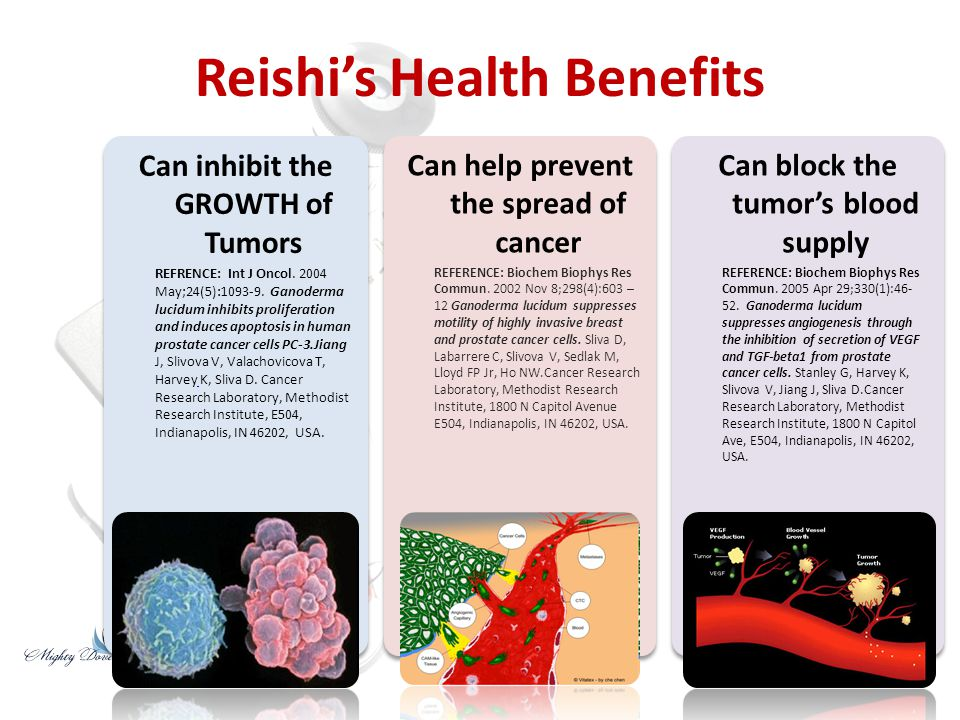 Reishi's Health Benefits Helps strengthen the body's immune system.