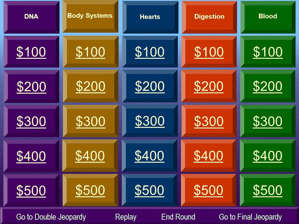 $300 $200 $100 $300 $100 $200 $100 $200 $300 $100 $200 $300 $100 $400 $500 $400 $500 $400 $500 $400 $500 $400 $500 $200 $300 DNA Hearts Digestion Blood Body Systems Go to Final JeopardyGo to Double JeopardyReplayEnd Round