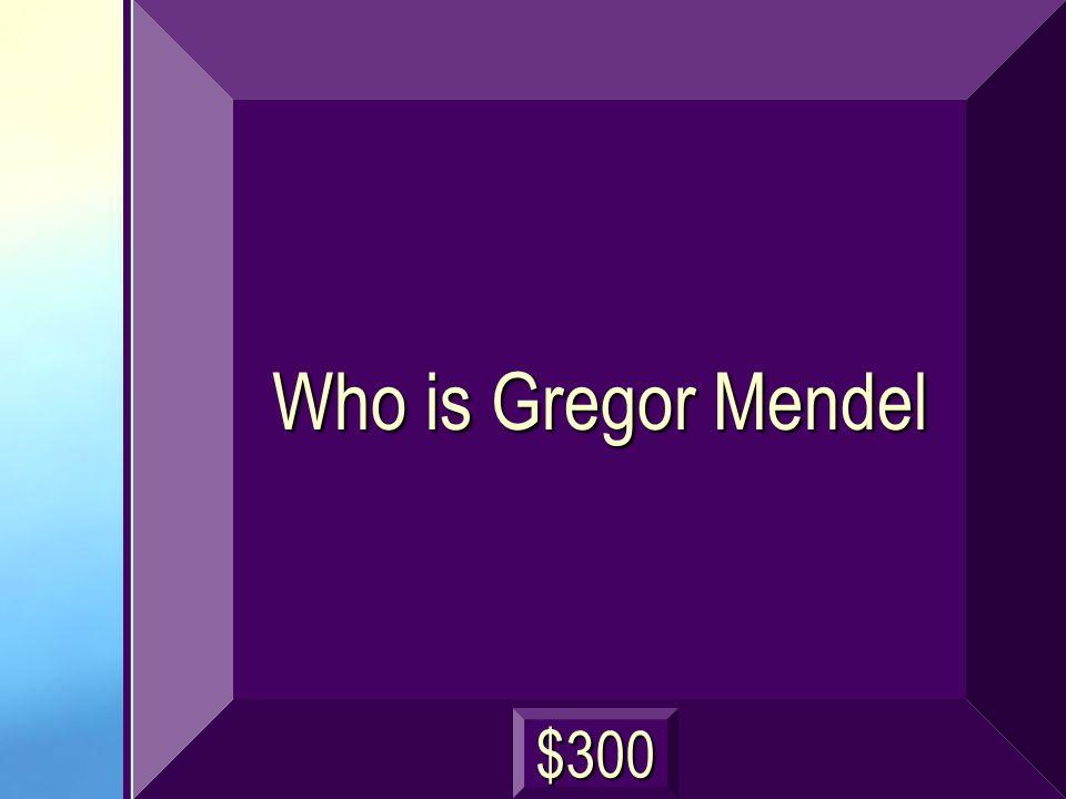 Who is Gregor Mendel $300
