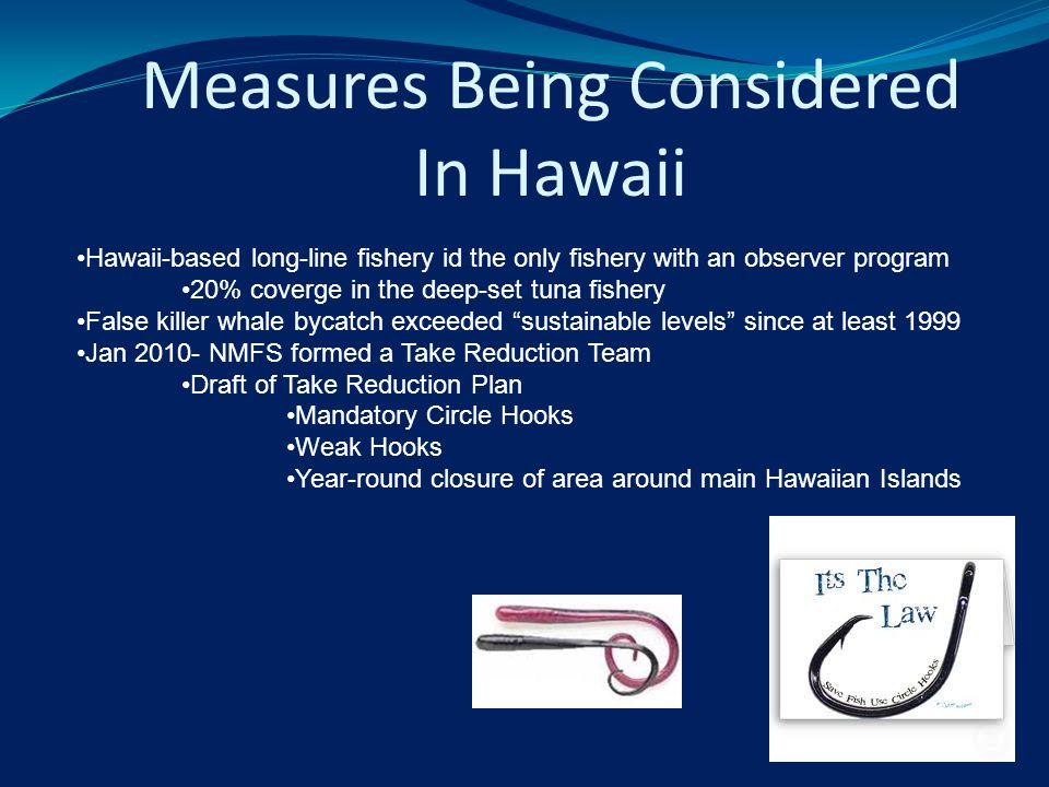 Hawaii-based long-line fishery id the only fishery with an observer program 20% coverge in the deep-set tuna fishery False killer whale bycatch exceeded sustainable levels since at least 1999 Jan 2010- NMFS formed a Take Reduction Team Draft of Take Reduction Plan Mandatory Circle Hooks Weak Hooks Year-round closure of area around main Hawaiian Islands Measures Being Considered In Hawaii