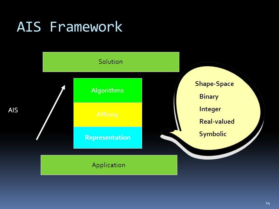 AIS Framework 14 Algorithms Affinity Representation Application Solution AIS Shape-Space Binary Integer Real-valued Symbolic