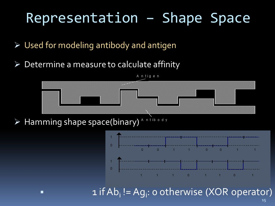 Representation – Shape Space  Used for modeling antibody and antigen  Determine a measure to calculate affinity  Hamming shape space(binary)  1 if