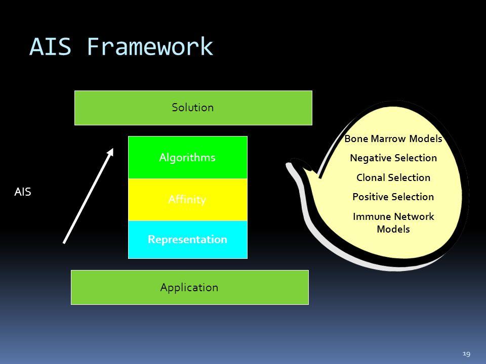 AIS Framework 19 Algorithms Affinity Representation Application Solution AIS Bone Marrow Models Negative Selection Clonal Selection Positive Selection Immune Network Models