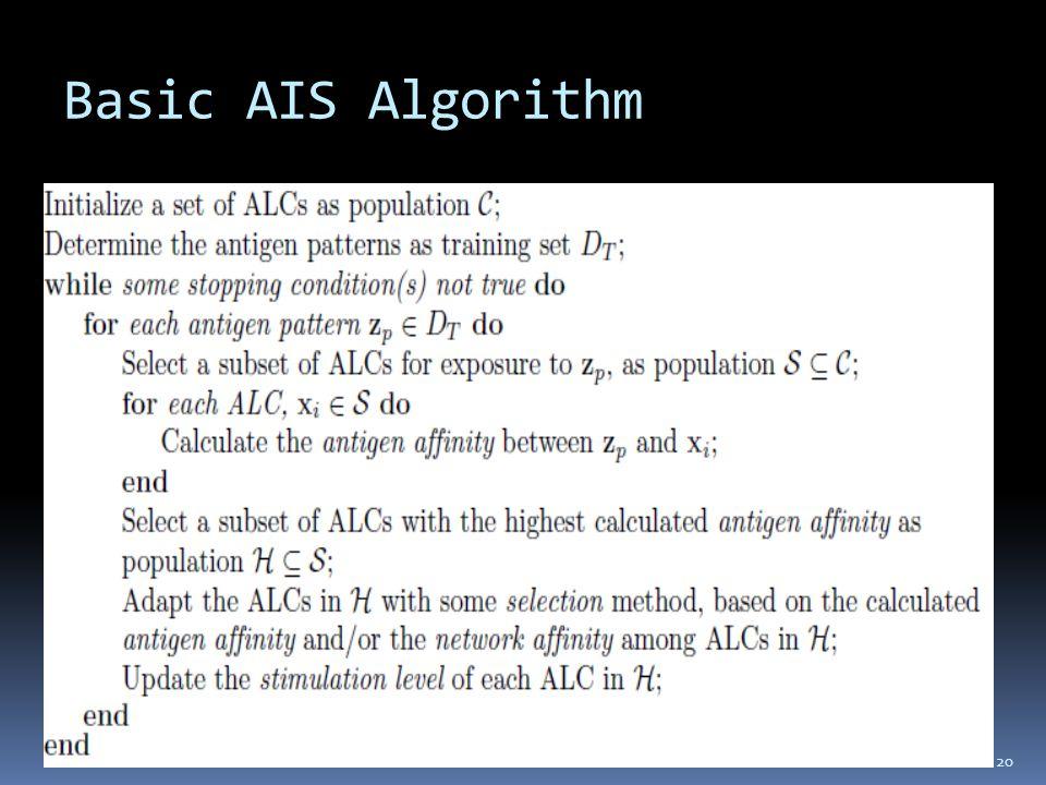 Basic AIS Algorithm 20