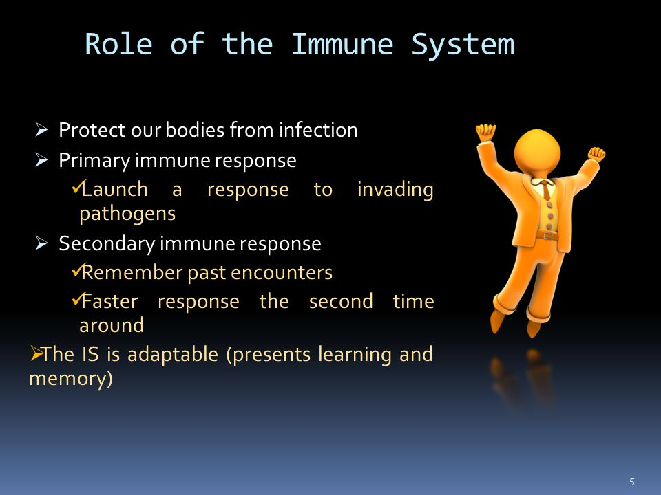 Role of the Immune System  Protect our bodies from infection  Primary immune response Launch a response to invading pathogens  Secondary immune response Remember past encounters Faster response the second time around  The IS is adaptable (presents learning and memory) 5