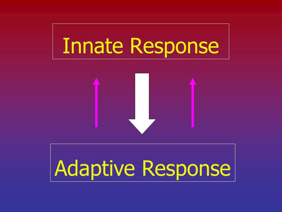 Innate Response Adaptive Response