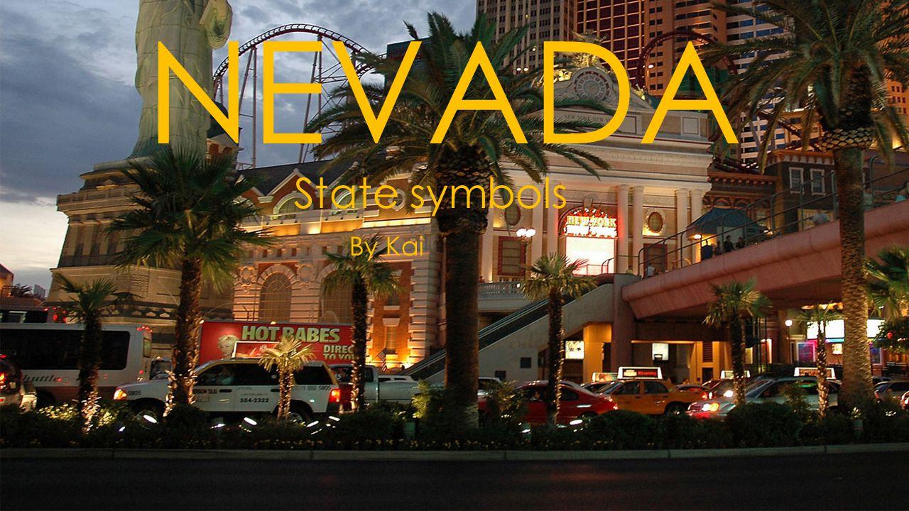 NEVADA State symbols By Kai