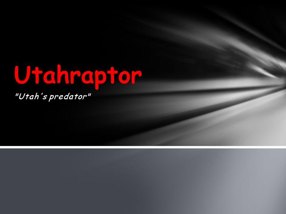 Utah s predator Utahraptor