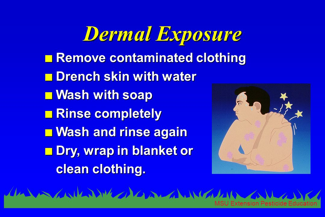 MSU Extension Pesticide Education Dermal Exposure n Remove contaminated clothing n Drench skin with water n Wash with soap n Rinse completely n Wash and rinse again n Dry, wrap in blanket or clean clothing.