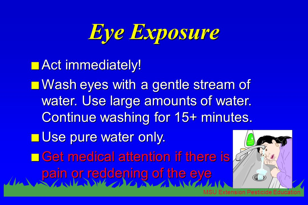 MSU Extension Pesticide Education Eye Exposure n Act immediately.