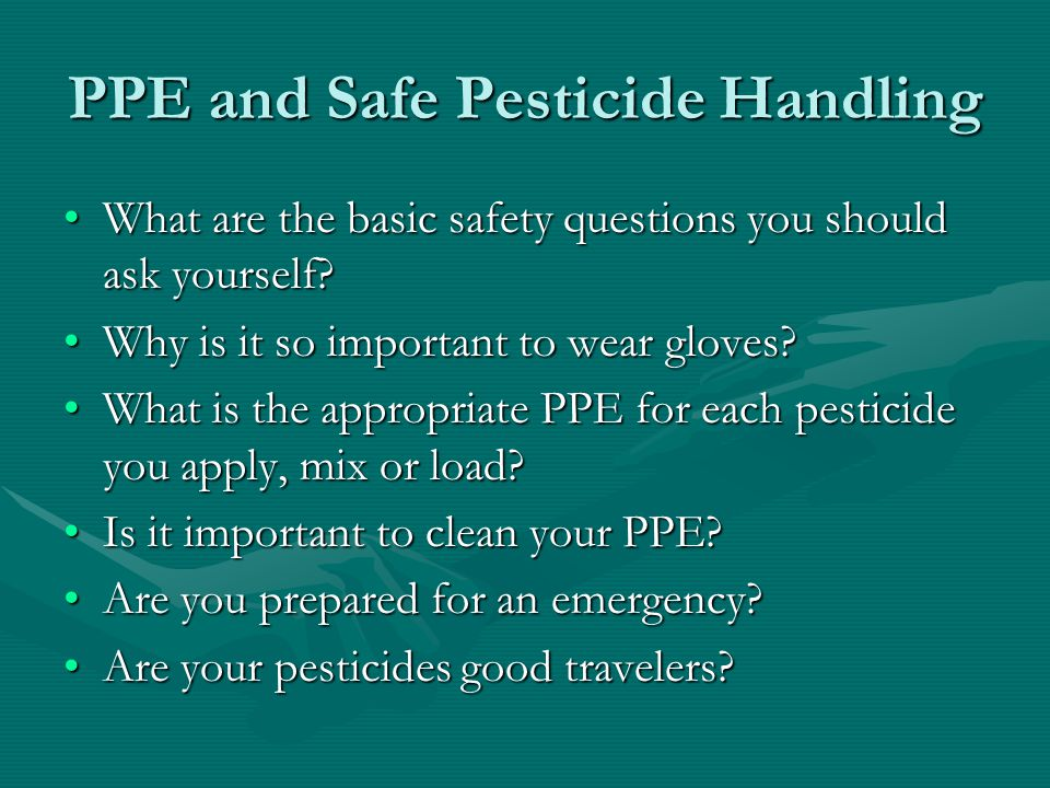 What are the basic safety questions you should ask yourself What are the basic safety questions you should ask yourself.