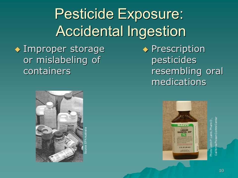 10 Pesticide Exposure: Accidental Ingestion  Improper storage or mislabeling of containers  Prescription pesticides resembling oral medications Photo: John P.